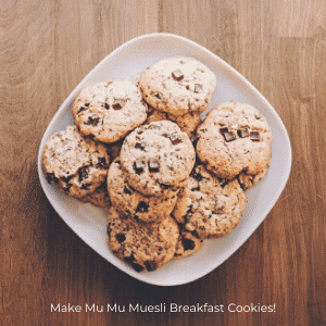 Vegan Oatmeal Cookie Recipes