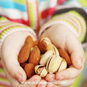 Fresh Almonds Health Benefits